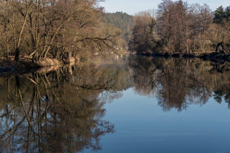树行的暗影在反射表面上的河的河岸的 免版税库存图片