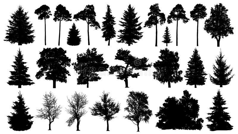 树被设置的剪影 具球果森林在白色背景的被隔绝的树 库存例证