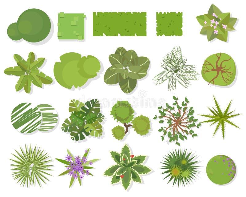 树顶视图 不同的树,植物传染媒介集合建筑或风景设计的 使在白色隔绝的符号集环境美化 库存例证