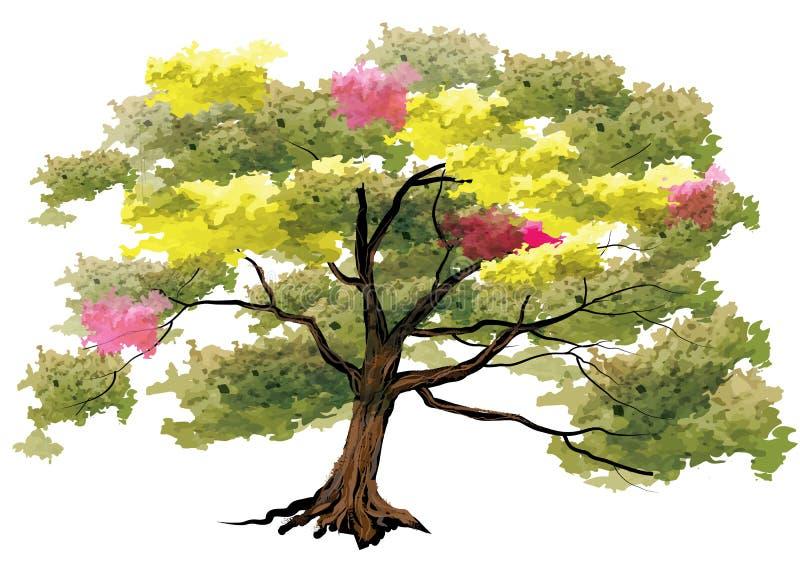 树,在白色背景,与刷子冲程的水彩神色的大树 库存例证