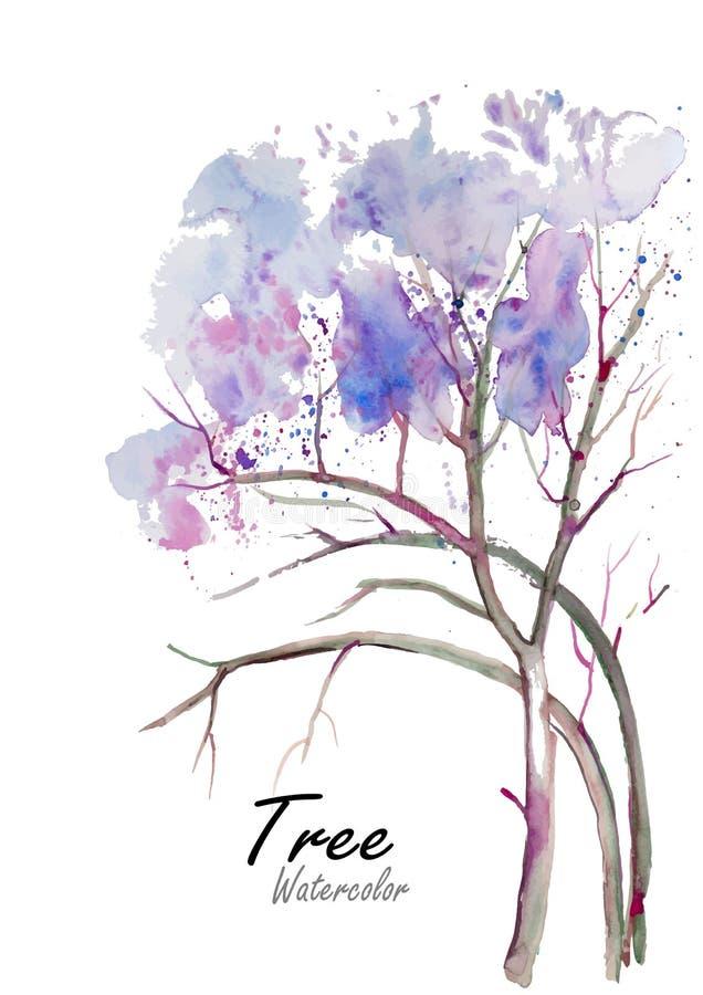 树 在白色背景w,水彩,花,花,水,例证,背景的手拉的水彩绘画, 皇族释放例证