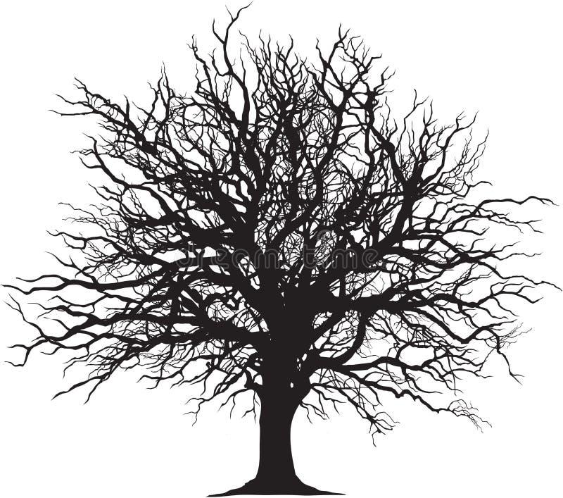 树黑概述 库存例证
