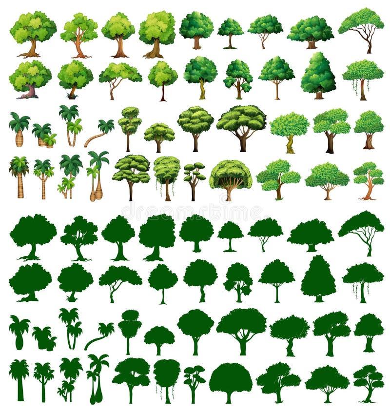 树Silhoutte  库存例证
