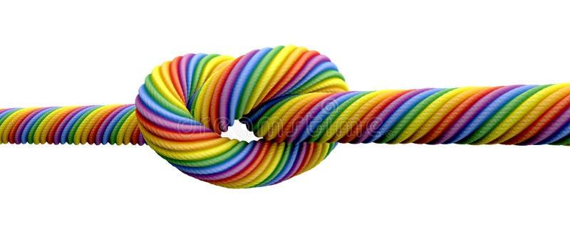栓结同性恋婚姻 库存例证