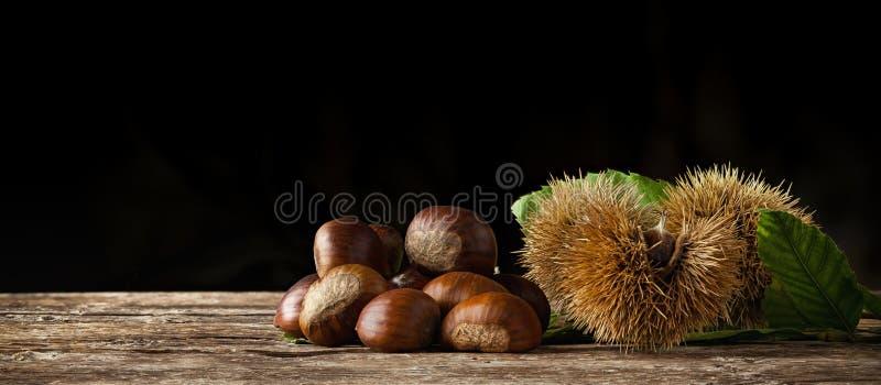 栗子和栗子bur在木桌上 免版税库存照片