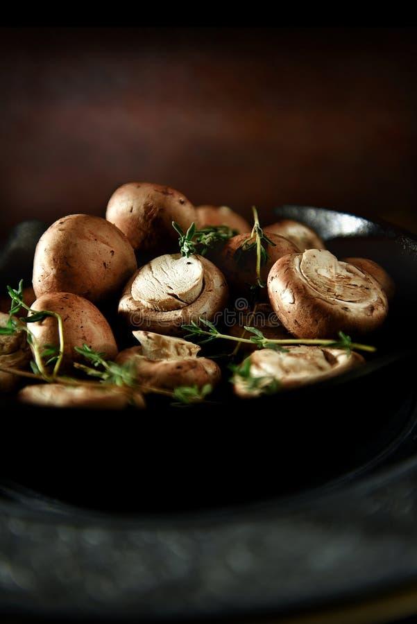 栗子采蘑菇有机 免版税库存图片