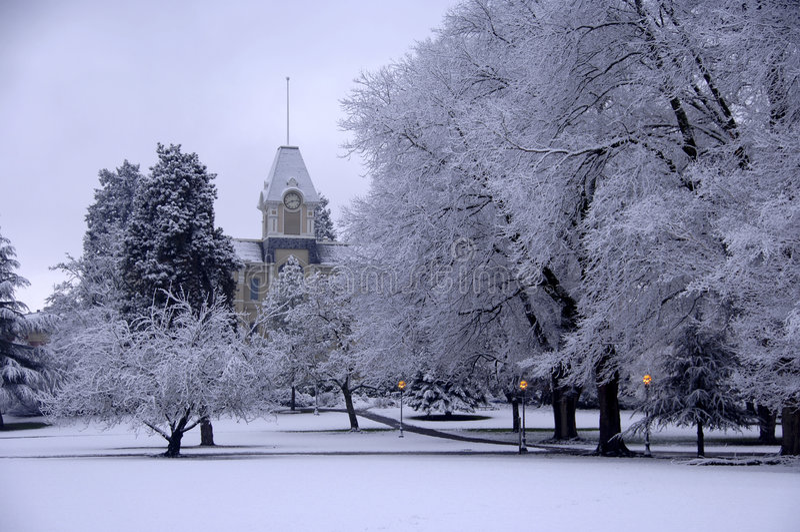 校园新鲜的雪 库存图片