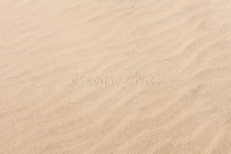 样式在金黄沙子海滩挥动 图库摄影