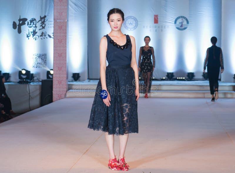 样式时尚展示第二十四系列  免版税库存照片