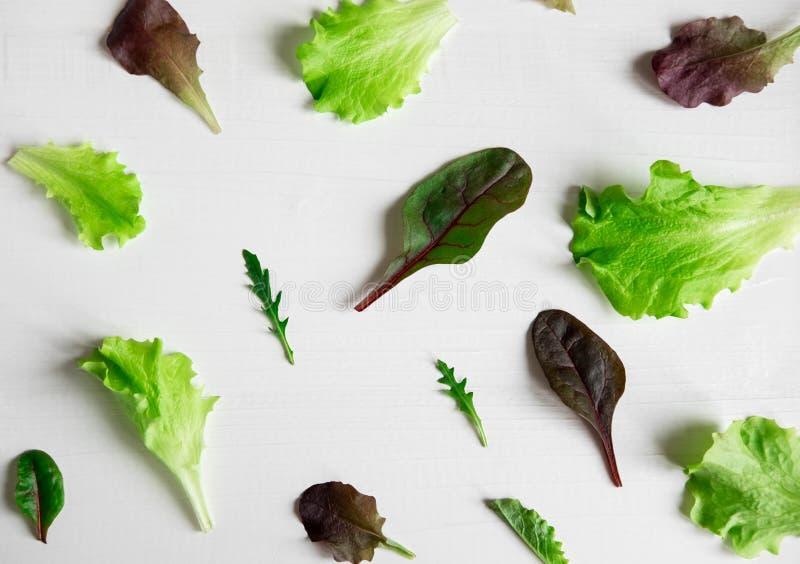 样式用背景的莴苣在站点 沙拉绿色和饮食产品 适当的营养和素食主义 库存照片