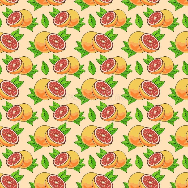 样式用葡萄柚 库存例证