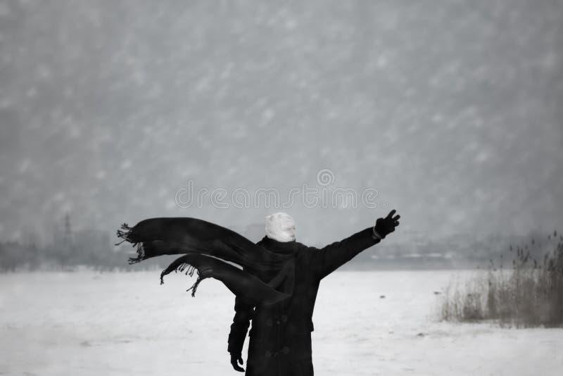 核冬天 库存照片
