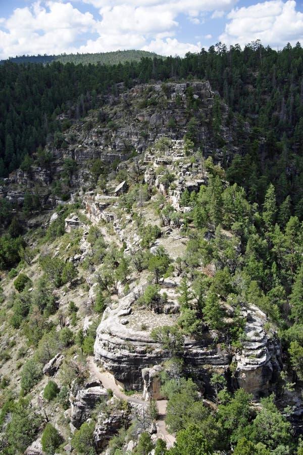 核桃峡谷横向 图库摄影