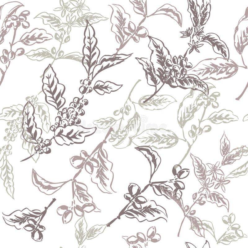 根据墨水的无缝的样式绘了咖啡分支 皇族释放例证