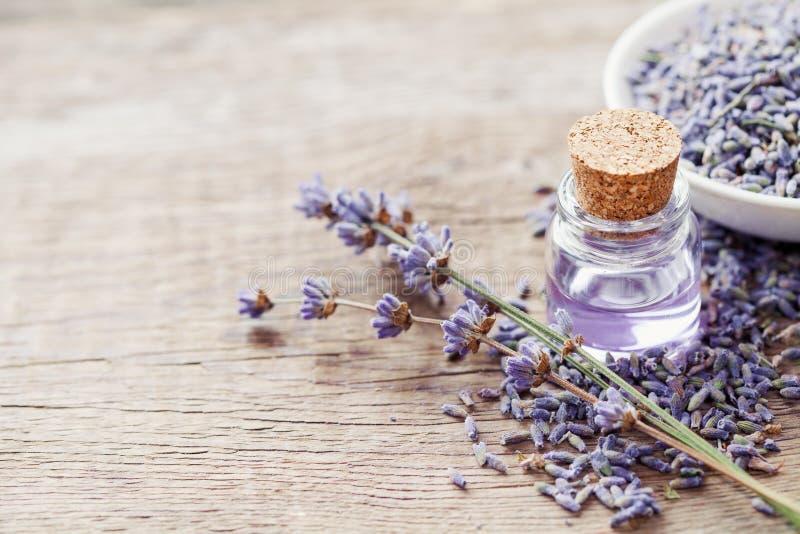 根本熏衣草油和干燥淡紫色花 免版税库存照片