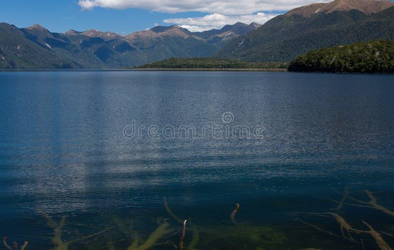 根水下在与山的前景在背景中在莫诺怀湖在南岛在新西兰 库存照片