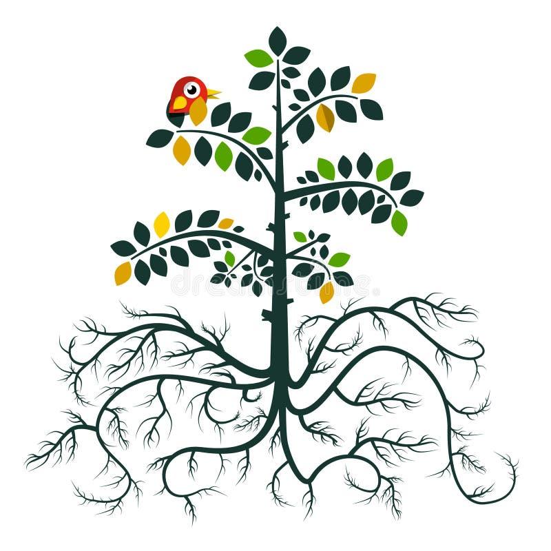 根源结构树 传染媒介平的设计自然标志 库存例证