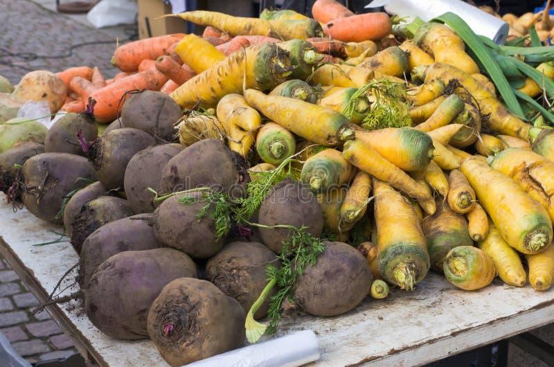 Download 根菜类 库存图片. 图片 包括有 蔬菜, 自治权, 健康, 采摘, 秋天, 红萝卜, 室外, 问题的, 工厂 - 22352875