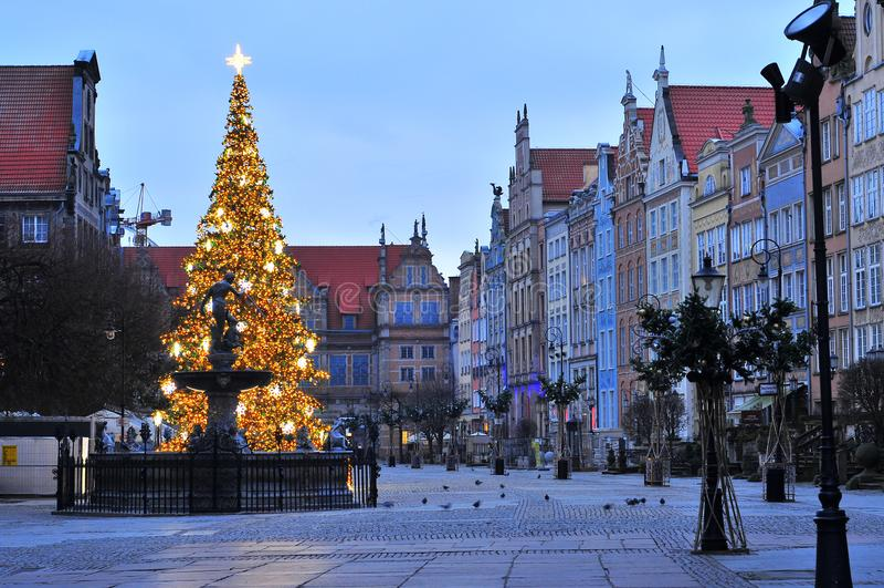 格但斯克,波兰- 2017年12月2日:格但斯克老镇有圣诞装饰的 有圣诞树的海王星喷泉在后面 免版税库存图片