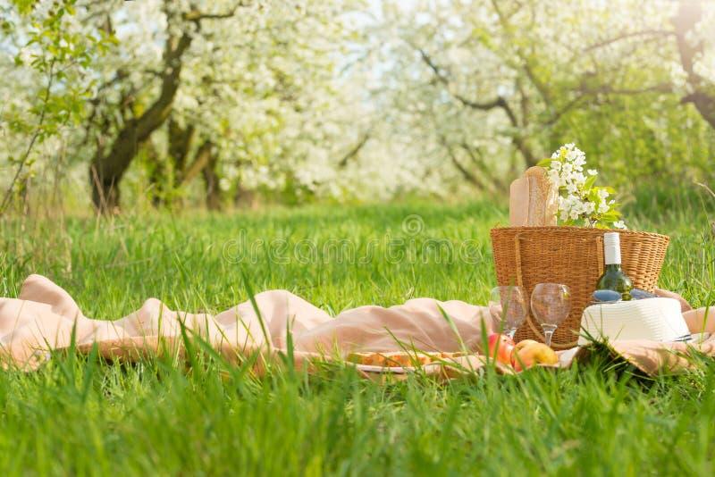 格子花呢披肩、汁液用苹果和一个袋子一顿野餐的,在温暖的太阳下,在开花的春天庭院里 野餐,夏天a的概念 库存图片