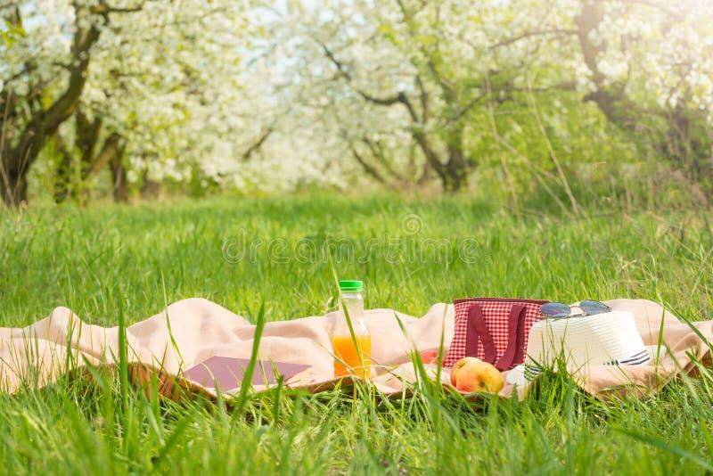 格子花呢披肩、汁液用苹果和一个袋子一顿野餐的,在温暖的太阳下,在开花的春天庭院里 野餐,夏天a的概念 库存照片