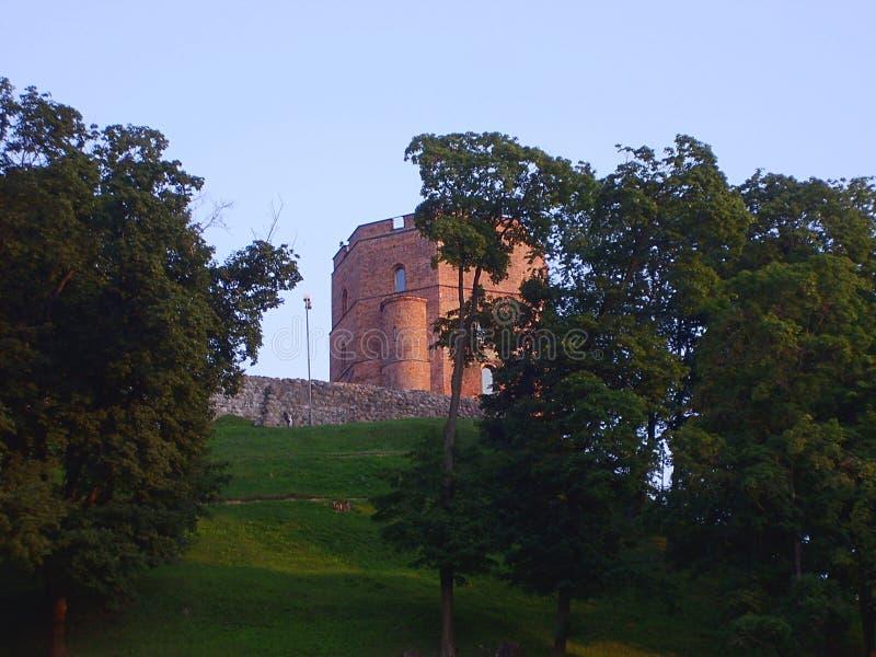 格季米纳斯城堡塔在Vilnus r 库存照片
