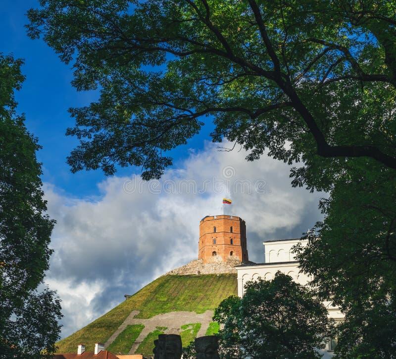 格季米纳斯塔在维尔纽斯,立陶宛 库存图片