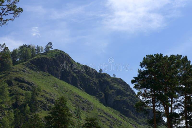 格尔尼阿尔泰共和国 免版税库存照片