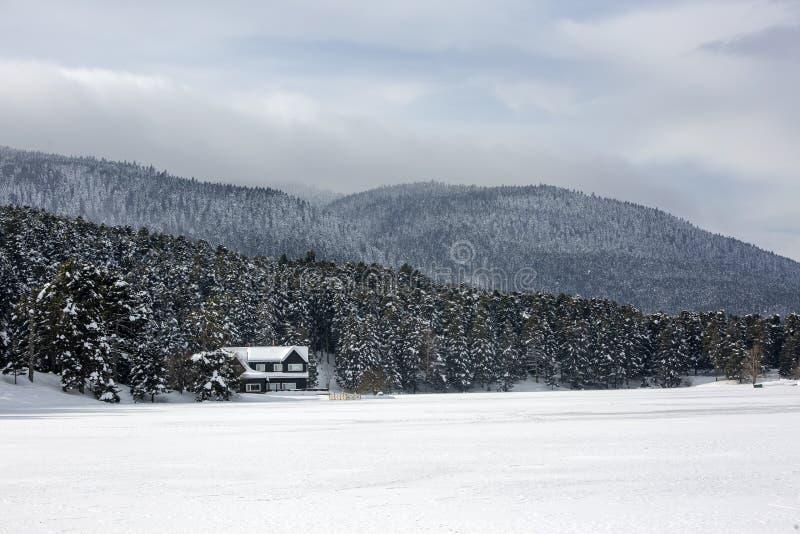 格尔居克/博卢/土耳其,冬天季节雪风景 库存图片