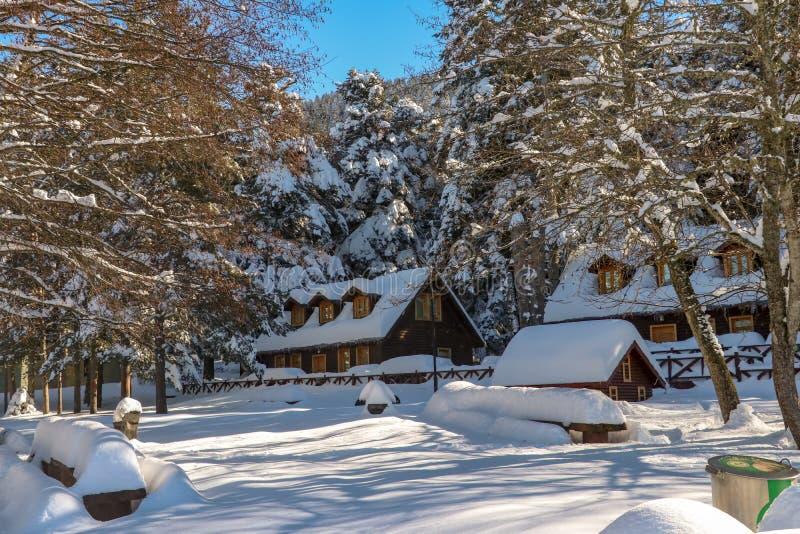 格尔居克/博卢/土耳其,冬天季节雪风景 库存照片