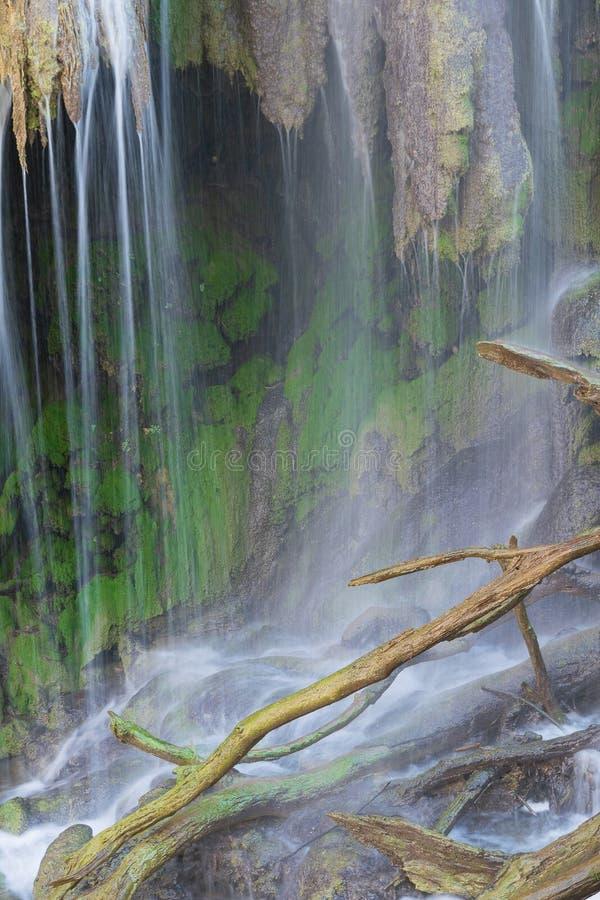 格尔曼秋天自然美人在科罗拉多弯国家公园 免版税库存照片