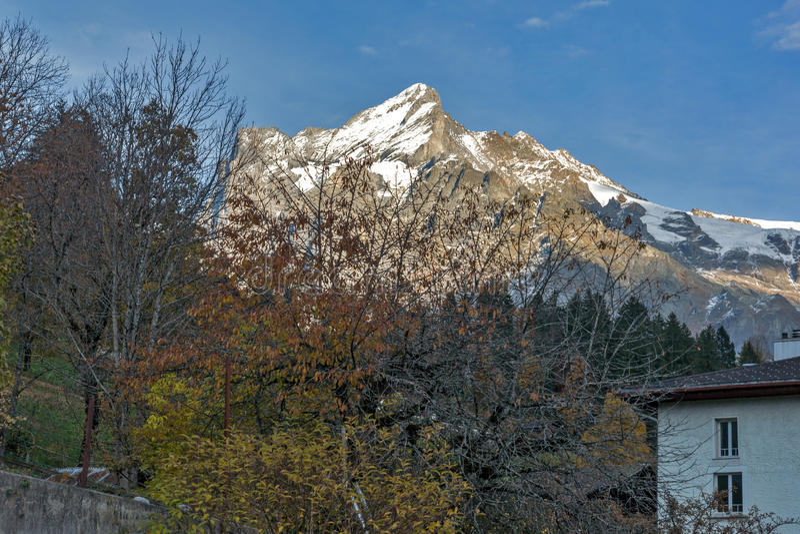 格林德瓦阿尔卑斯村庄看法临近烟特勒根,瑞士镇  免版税库存图片