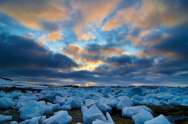 格陵兰icecubes 免版税库存图片