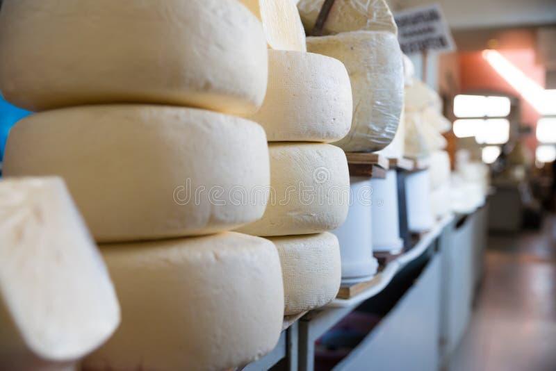 格鲁吉亚乳酪品种照片在第比利斯街道上的图表和网络设计的,网站或流动应用程序的 免版税库存图片