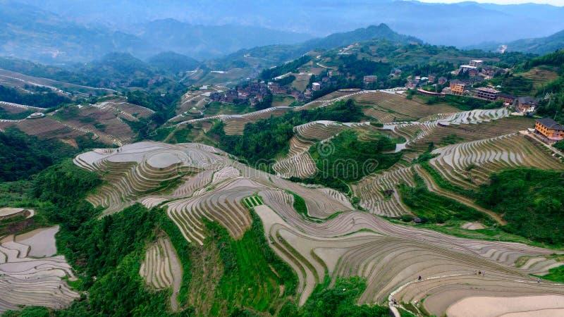 桂林龙的后面 免版税库存图片