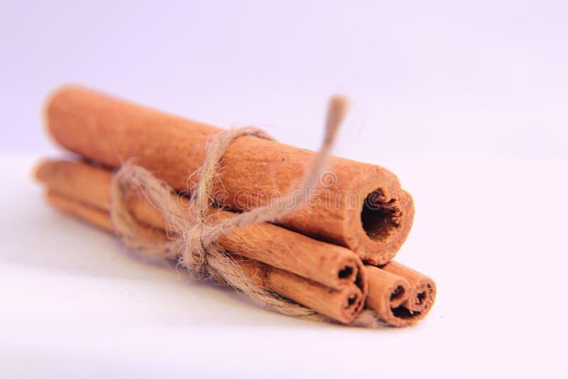桂香是一个芳香香料 从树桂香celonica拉特的吠声的管 樟脑属verum 免版税库存照片