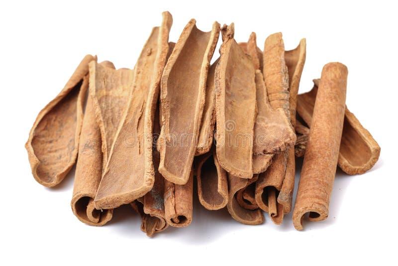 桂香草本和自然食物香料成份 免版税库存照片