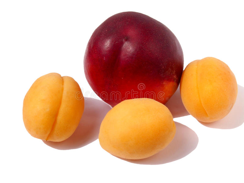 桃子用杏子 图库摄影