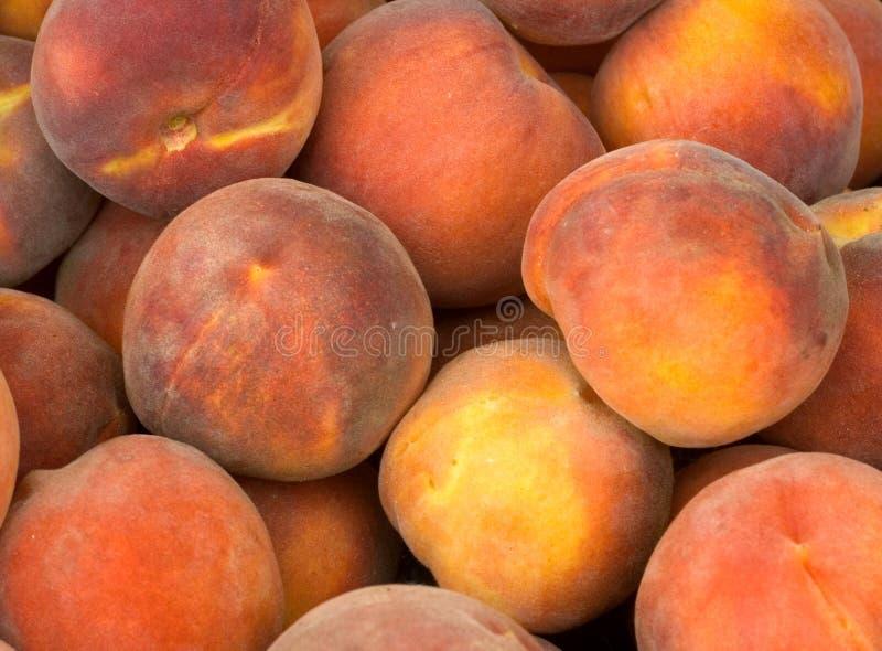 桃子黄色 免版税库存照片