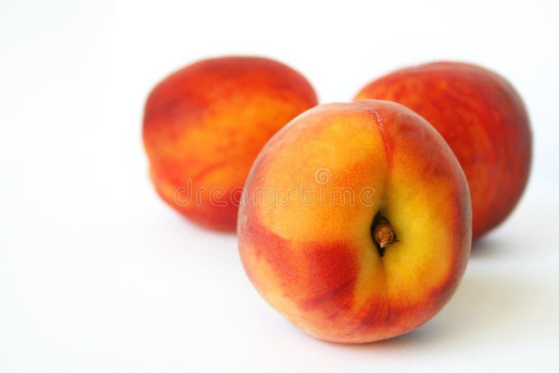 桃子 免版税图库摄影