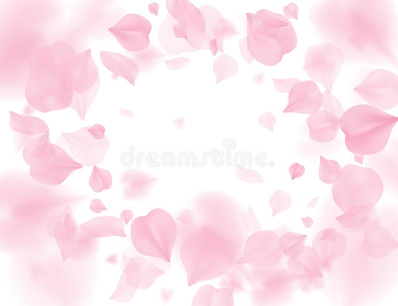 桃红色佐仓瓣落的花传染媒介背景 在白色背景隔绝的浪漫开花 覆盖物华伦泰3D 皇族释放例证
