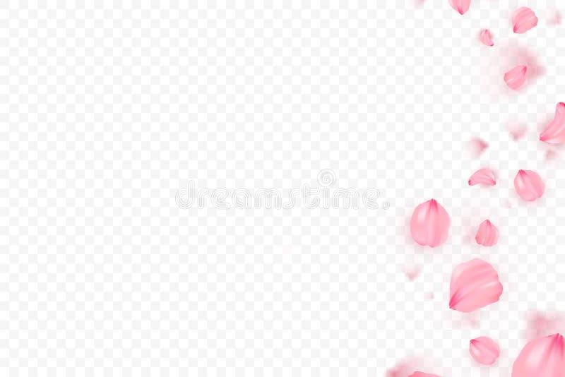 桃红色佐仓落的瓣传染媒介背景 3D浪漫例证 向量例证