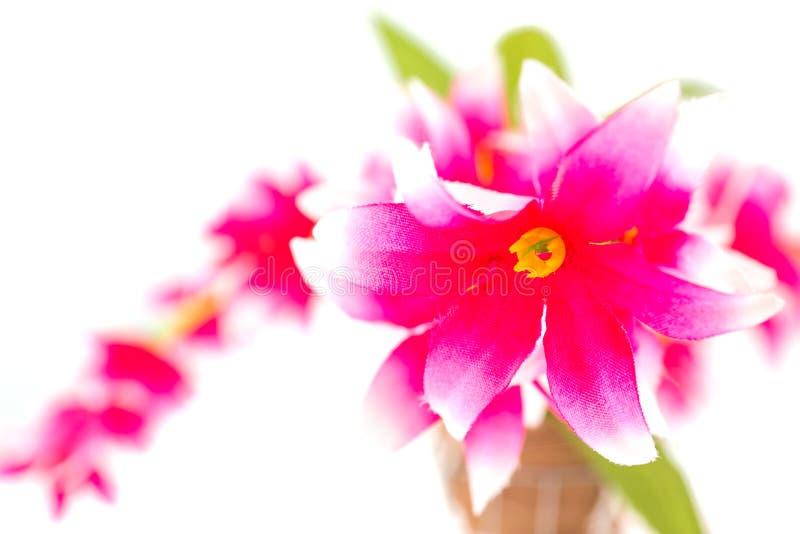 桃红色假花 库存照片