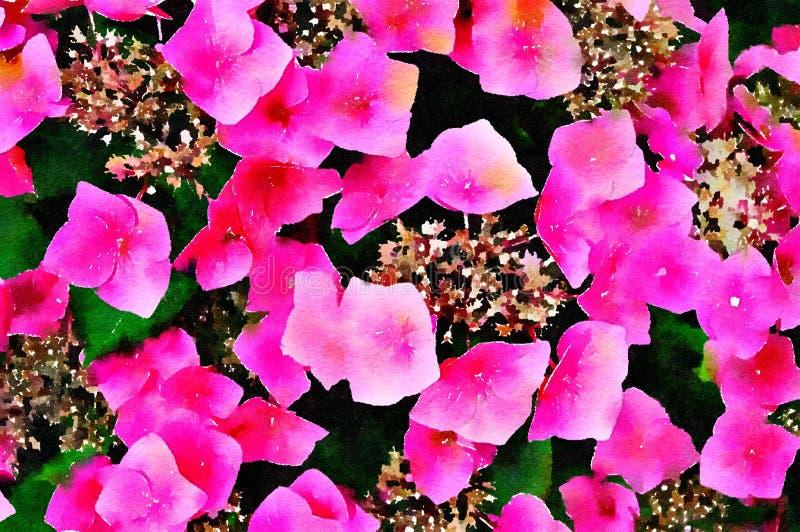 桃红色八仙花属花水彩绘画  背景砖老纹理墙壁 库存例证