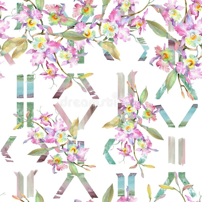 桃红色兰花花束  花卉植物的花 水彩背景例证集合 无缝的背景模式 免版税图库摄影