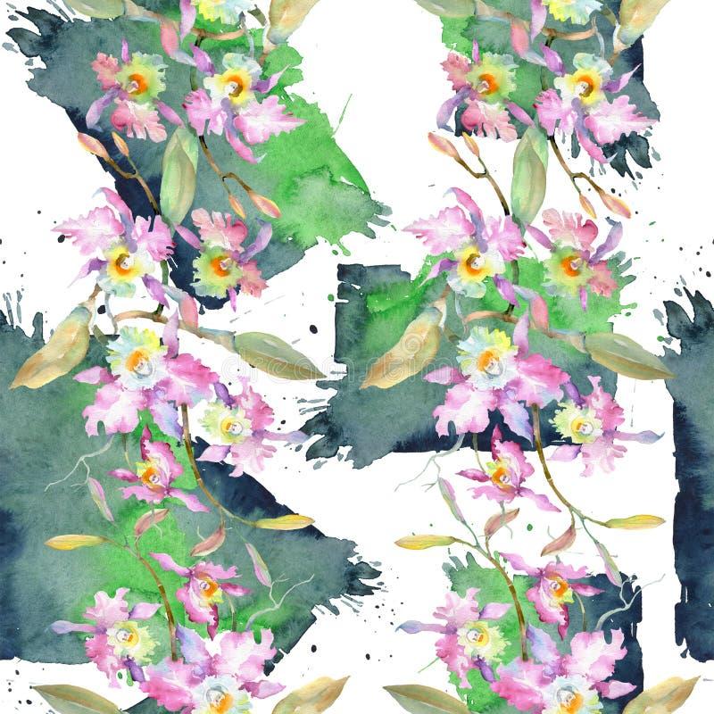 桃红色兰花花束  花卉植物的花 水彩背景例证集合 无缝的背景模式 库存照片