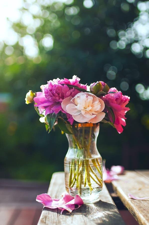 桃红色和奶油色牡丹花束在花瓶的 库存照片