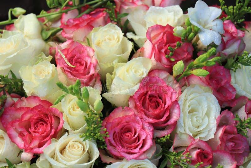 桃红色和白色婚姻的花 免版税库存图片