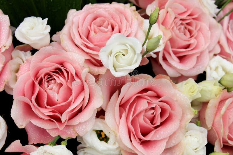 桃红色和白色婚礼花 图库摄影