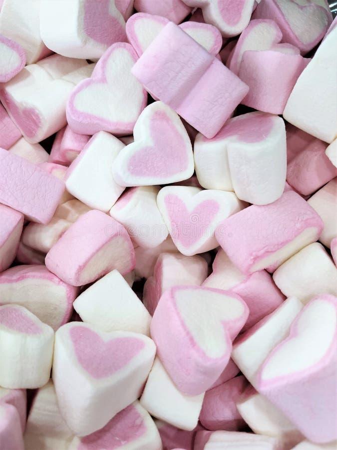 桃红色和白色心脏蛋白软糖背景,甜软的精美呈杂色的纹理充分的空间,顶视图,平的布局,爱和 免版税图库摄影